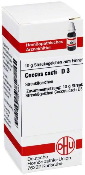Dhu Coccus Cacti D3 Globuli