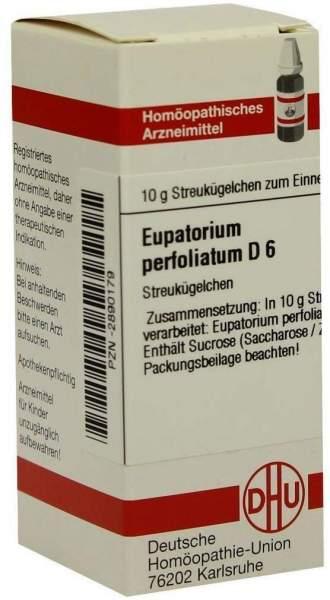 Eupatorium Perfoliatum D6 10 G Globuli
