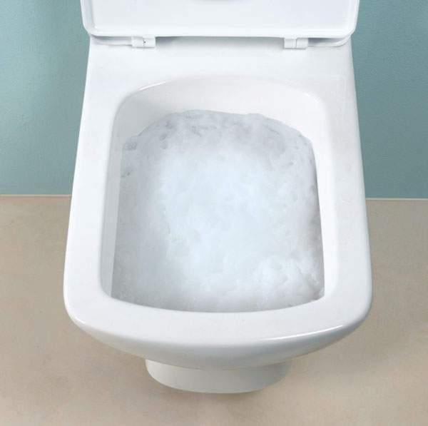 WC Zauberschaum Hai 1kg selbstreinigernder Kraftschaum