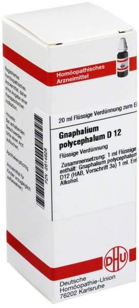 Gnaphalium Polyceph. D 12 Dilution