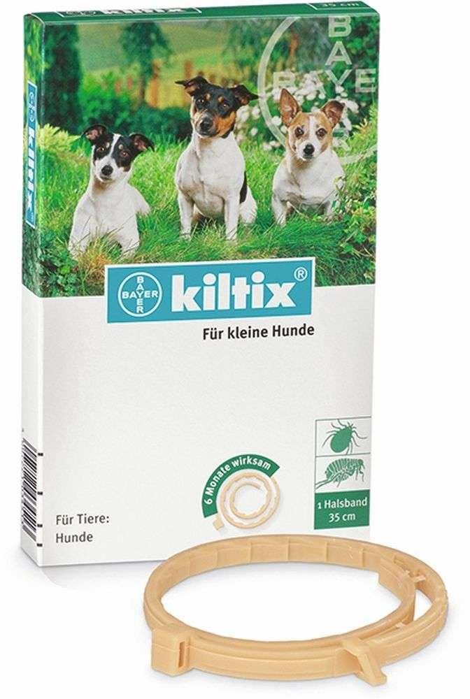 halsband für kleine hunde kaufen