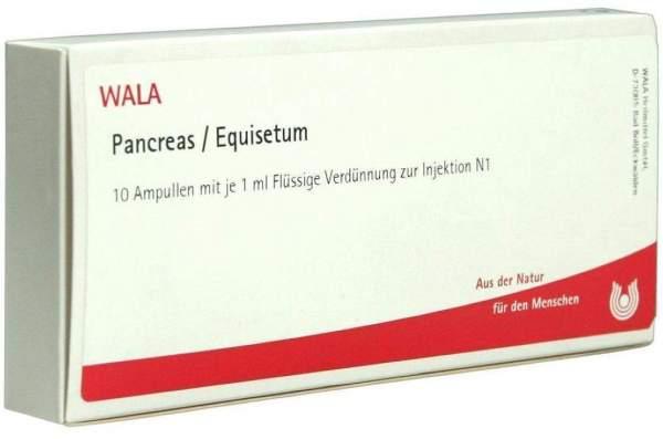 Pancreas- Equisetum Ampullen