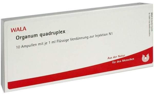 Organum Quadruplex 10 X 1 ml Ampullen