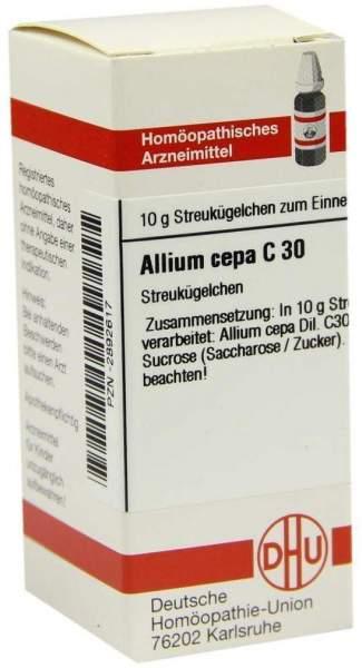 Allium Cepa C30 Dhu 10 G Globuli