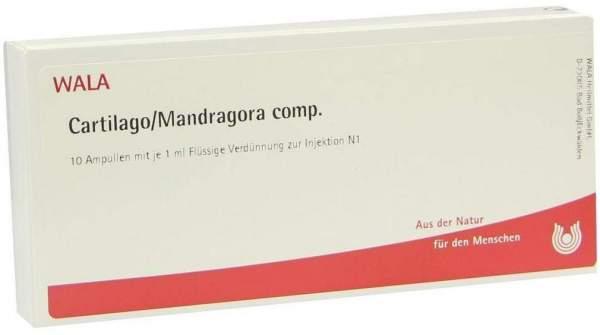 Cartilago Mandragora Comp. 10 X 1 ml Ampullen