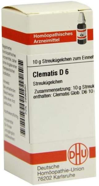 Clematis D 6 Globuli
