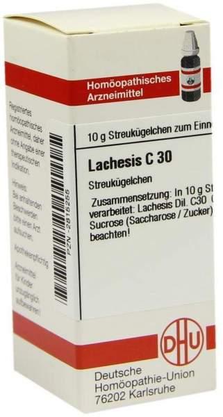 Lachesis C30 10 G Globuli