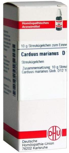Carduus Marianus D12 10 Gglobuli