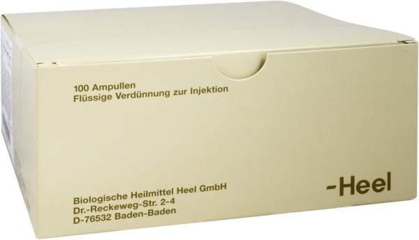 Acidum L(+)lacticum Injeele Forte 1,1 ml 100 Ampullen