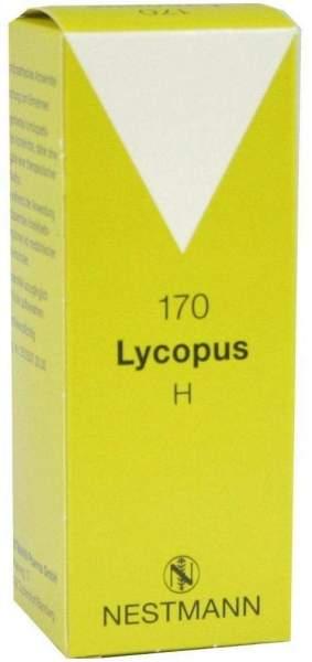 Lycopus H Nr. 170 50 ml Tropfen