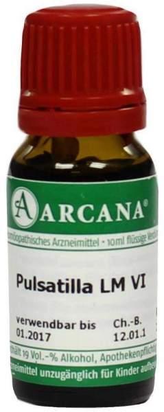 Arcana Pulsatilla 6 Lm Dilution Verdünnung 10ml