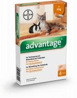 Advantage 40mg für kleine Katzen und kleine Zierkaninchen