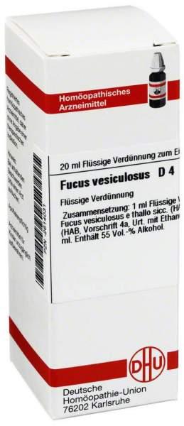 Dhu Fucus Vesiculosus D4 Dilution