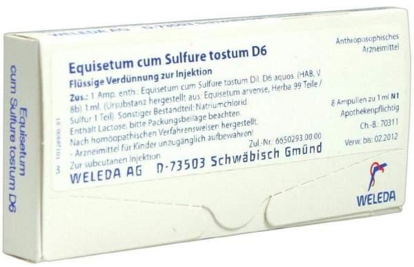 Equisetum cum Sulfure tostum D 6 Weleda 8 x 1 ml Ampullen
