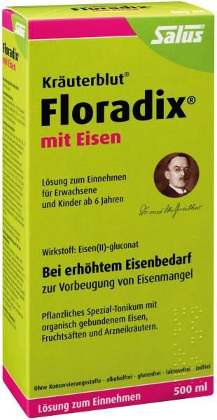 Floradix Eisen Tonikum 500 ml
