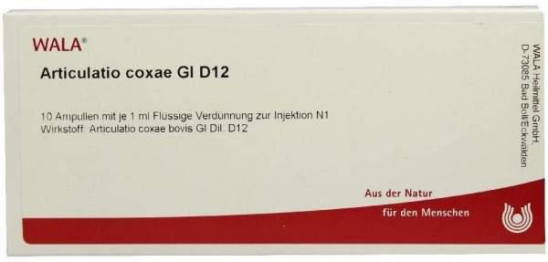 Articulatio Coxae Gl D 12 Ampullen