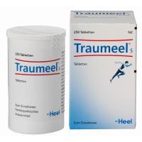 Traumeel S 250 Tabletten