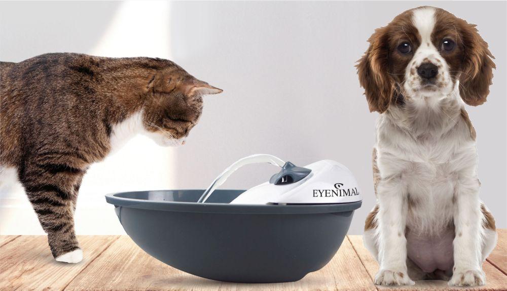 trinkbrunnen f r hunde katzen online bestellen volksversand versandapotheke. Black Bedroom Furniture Sets. Home Design Ideas