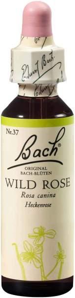 Bachblüten Wild Rose 20 ml Tropfen