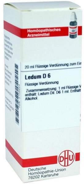 Ledum D 6 20 ml Dilution