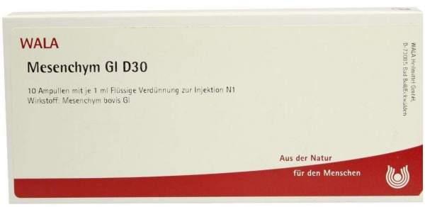 Mesenchym Gl D 30 Ampullen