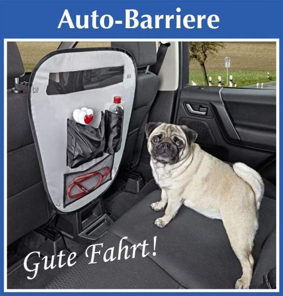 Auto-Barriere