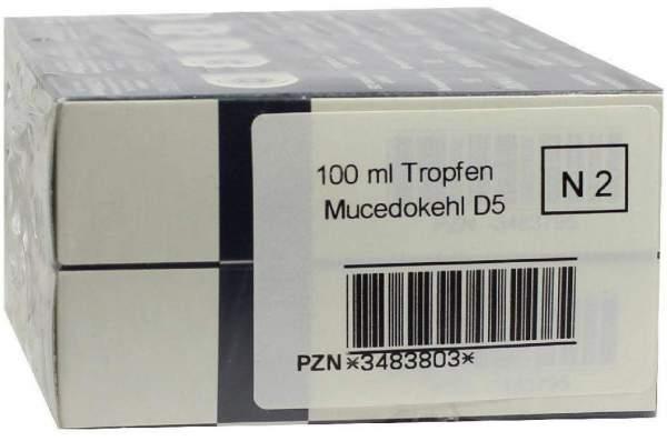 Mucedokehl D5 Tropfen 100 ml Tropfen