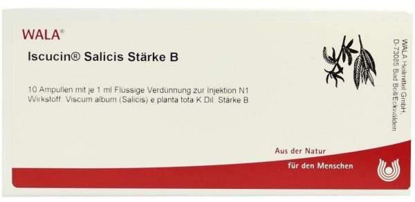Iscucin Salicis Stärke B Ampullen