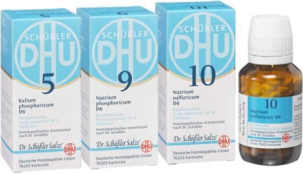 Biochemie DHU Frühjahrs Kur 3 x 80 Tabletten