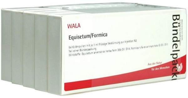Equisetum-Formica 50 X 1 ml Ampullen