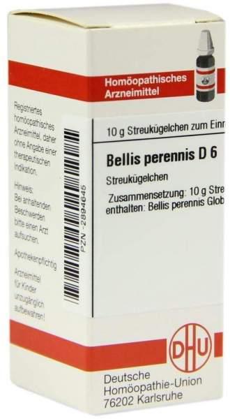 Bellis Perennis D 6 Globuli