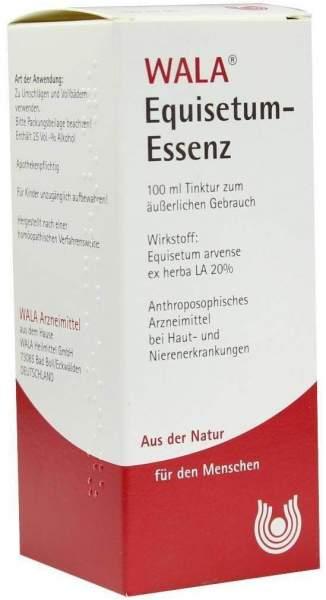 Equisetum Essenz