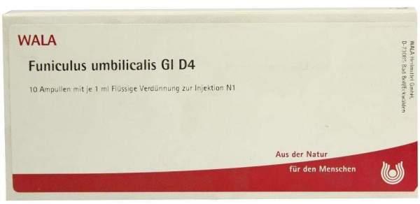 Funiculus Umbilicalis Gl D 4 Ampullen