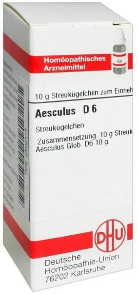Aesculus D6 10 G Globuli