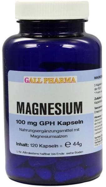Magnesium 100 mg 120 Kapseln