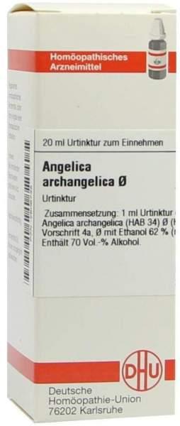 Angelica Archangelica Urtinktur 20 ml Dilution