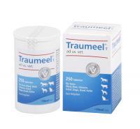 Traumeel T Vet 250 Tabletten