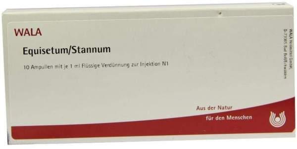 Equisetum-Stannum Ampullen