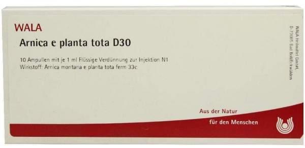 Arnica E Planta Tota D 30 Ampullen 10 X 1 ml