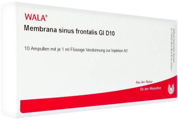 Membrana Sinus Frontalis Gl D 10 Ampullen 10 X 1 ml