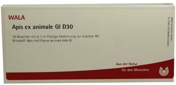 Apis Ex Animale Gl D 30 Ampullen 10 X 1 ml