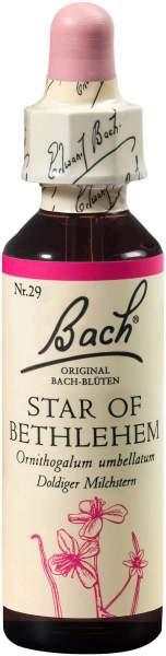 Bachblüten Star of Bethlehem 20 ml Tropfen