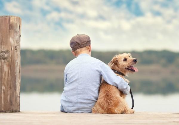 Junge sitzt bei Reise mit Hund auf einem Seesteg