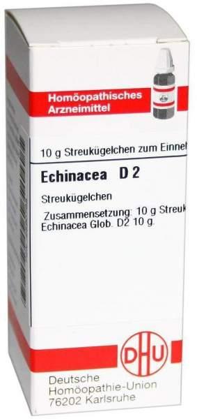 Echinacea D 2 10 G Globuli