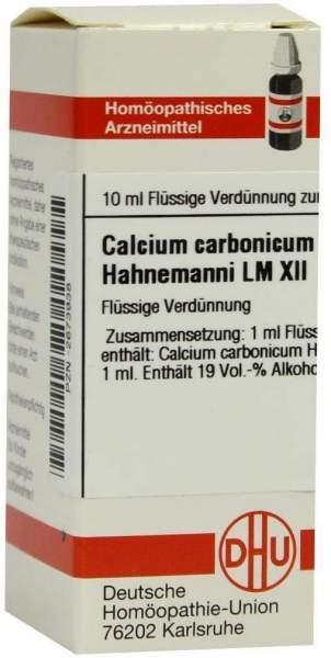 Dhu Calcium Carbonicum Hahnemanni Lm Xii Dilution