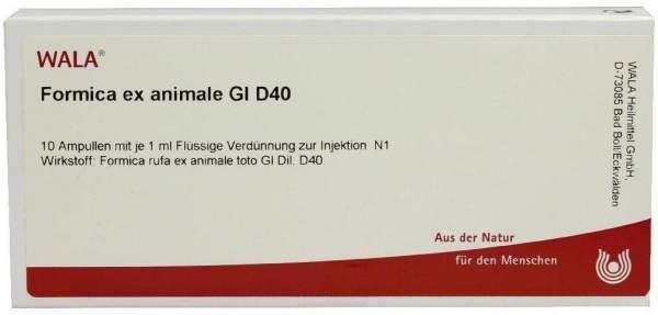 Formica Ex Animale Gl D 40 Ampullen