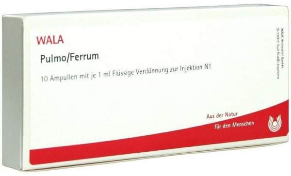 Pulmo Ferrum Ampullen