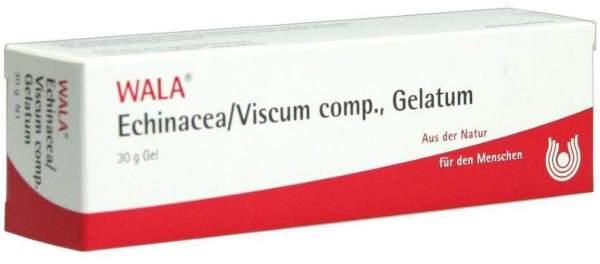 Wala Echinacea Viscum Comp. Gelatum