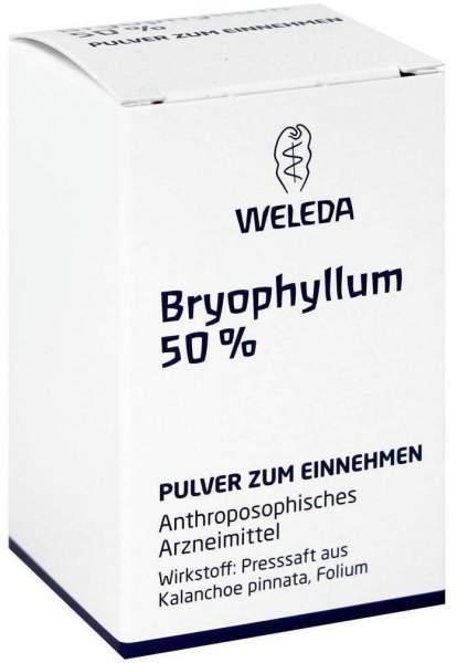 Bryophyllum 50% Trituration