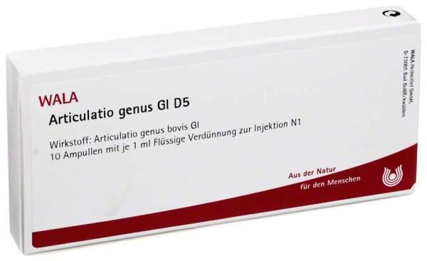 Articulatio Genus Gl D 5 Ampullen